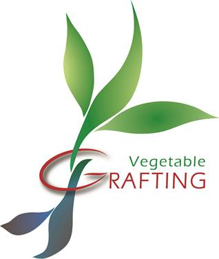 logo vegetable grafting grande